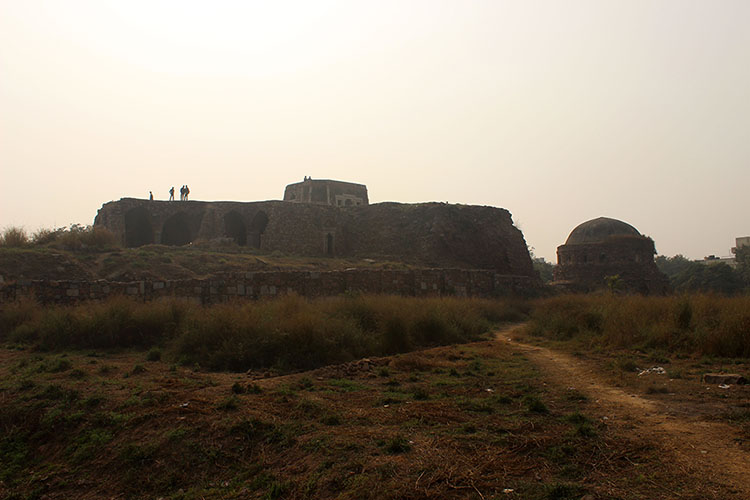 The Ruins of the Palace of Muhammad bin Tughlaq